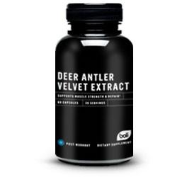Deer Antler Velvet Extract