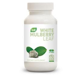 White Mulberry Leaf